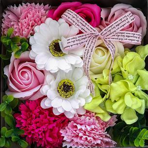 造花の写真素材 [FYI02984965]