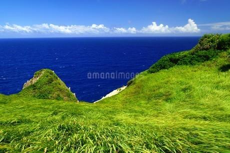 母島の写真素材 [FYI02985166]