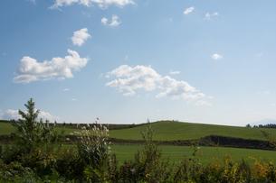 緑の畑の丘の写真素材 [FYI02985296]