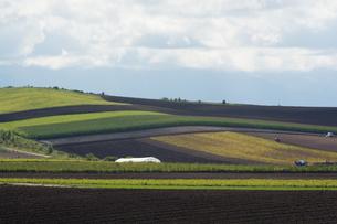パッチワークのような畑作地帯の写真素材 [FYI02985304]