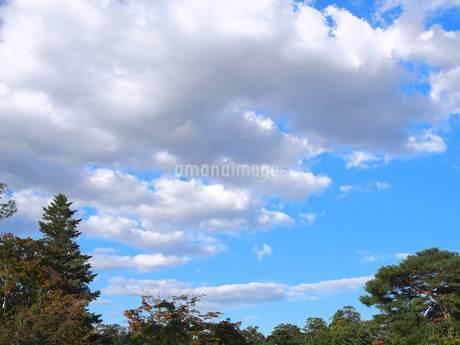 9月の空②の写真素材 [FYI02985460]