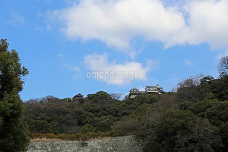 堀之内からの松山城の写真素材 [FYI02985465]