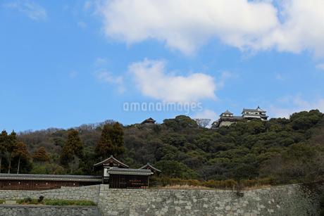 堀之内からの松山城の写真素材 [FYI02985466]