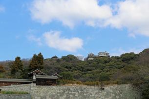 堀之内からの松山城の写真素材 [FYI02985467]