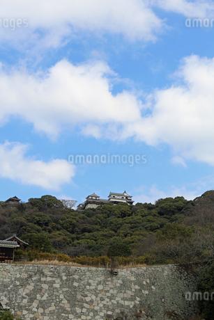堀之内からの松山城の写真素材 [FYI02985468]