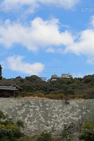 堀之内からの松山城の写真素材 [FYI02985469]