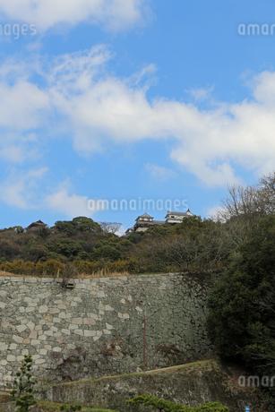 堀之内からの松山城の写真素材 [FYI02985471]