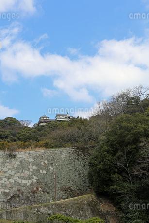 堀之内からの松山城の写真素材 [FYI02985472]