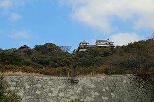 堀之内からの松山城の写真素材 [FYI02985473]