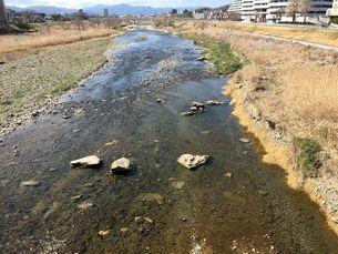 春のあさ川 八王子市大和田橋の写真素材 [FYI02985476]