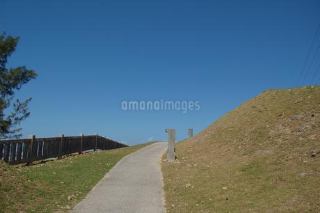 快晴の空と公園の遊歩道の写真素材 [FYI02985507]