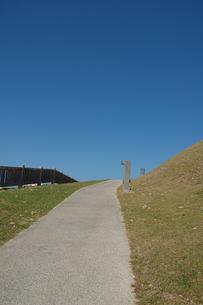 快晴の空と公園の遊歩道の写真素材 [FYI02985511]
