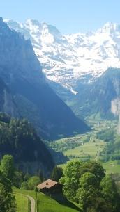 スイス ユングフラウ地方 ヴェンゲン~ラウターブルーネン 谷 2の写真素材 [FYI02985557]