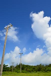 快晴の空と照明鉄塔の写真素材 [FYI02985664]