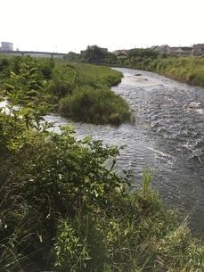 川らしさを表現する波 八王子市あさ川にての写真素材 [FYI02985742]