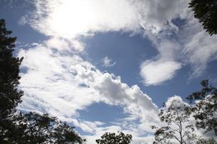 サンパウロの夏の青空と雲の写真素材 [FYI02985743]