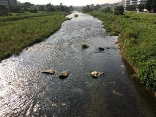 8月のマイタウン八王子 あさ川 大和田橋よりの写真素材 [FYI02985744]