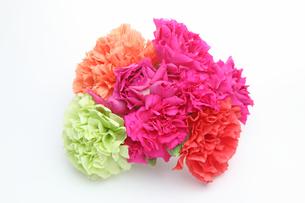 カーネーションの花束の写真素材 [FYI02985962]