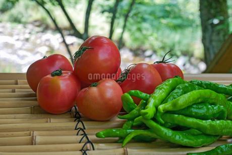竹製ベンチに置かれたトマトと甘長ピーマンの写真素材 [FYI02985993]