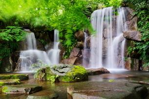 清涼な夏の滝の写真素材 [FYI02986073]