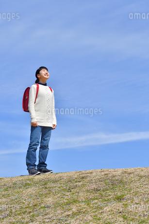 青空で見上げる小学生の女の子(ランドセル、芝生広場)の写真素材 [FYI02986263]