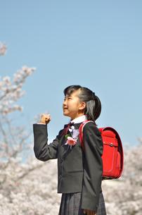 小学校を卒業する女の子(桜、ランドセル)の写真素材 [FYI02986292]