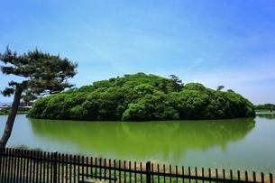 履中天皇陵古墳の写真素材 [FYI02986421]