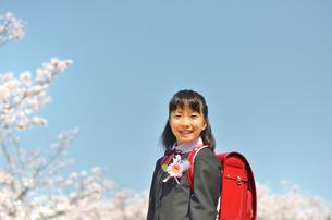 小学校を卒業する女の子(桜、青空、ランドセル)の写真素材 [FYI02986514]