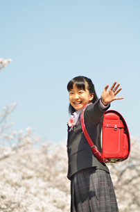 小学校を卒業する女の子(桜、青空、ランドセル)の写真素材 [FYI02986519]