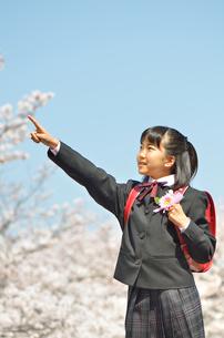 小学校を卒業する女の子(桜、ランドセル、青空)の写真素材 [FYI02986527]