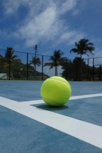 母島のテニスコートの写真素材 [FYI02986567]
