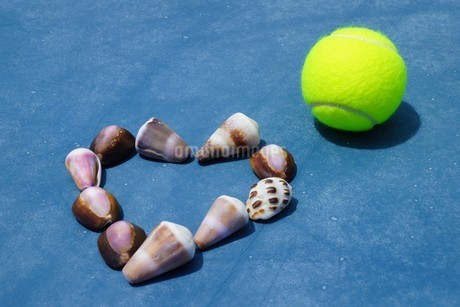 母島のテニスコートの写真素材 [FYI02986568]