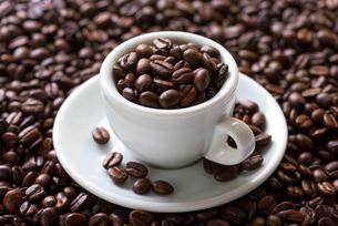 コーヒー豆の写真素材 [FYI02986646]