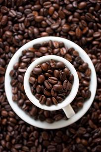 コーヒー豆の写真素材 [FYI02986647]