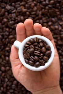 コーヒー豆の写真素材 [FYI02986648]