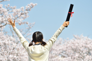 小学校を卒業する女の子(桜、後姿、青空)の写真素材 [FYI02986770]