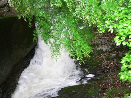 滝1の写真素材 [FYI02987420]