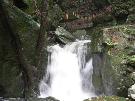 滝3の写真素材 [FYI02987429]
