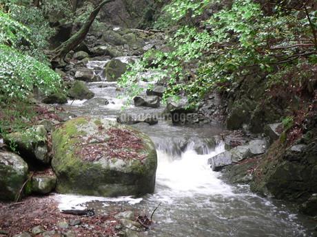 滝6の写真素材 [FYI02987440]