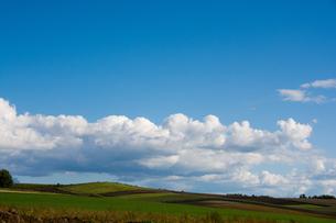 秋晴れの空と畑作地帯の写真素材 [FYI02987471]