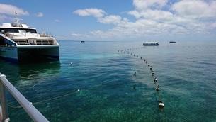 Green Islandの写真素材 [FYI02987886]