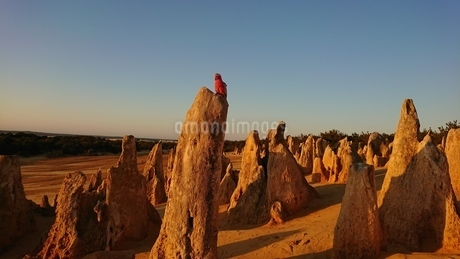 pinnaclesの写真素材 [FYI02987889]