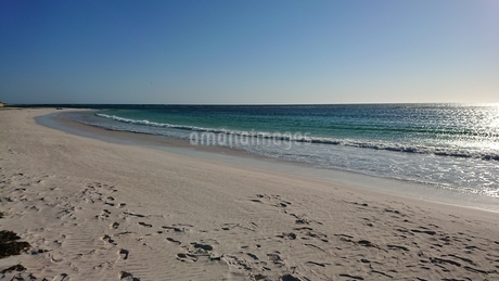 Lancelin Beachの写真素材 [FYI02987918]