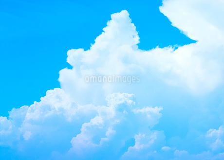 夏空の写真素材 [FYI02988160]