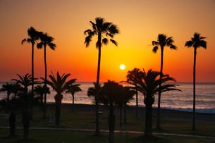 七里御浜 ふれあいビーチの日の出の写真素材 [FYI02988267]