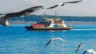 ダーダネルス海峡を横断するフェリーに群がるカモメ(チャナッカレ海峡横断フェリー)の写真素材 [FYI02988316]
