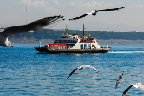 ダーダネルス海峡を横断するフェリーに群がるカモメ(チャナッカレ海峡横断フェリー)の写真素材 [FYI02988317]