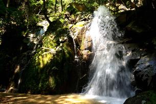 寿老の滝の写真素材 [FYI02988479]