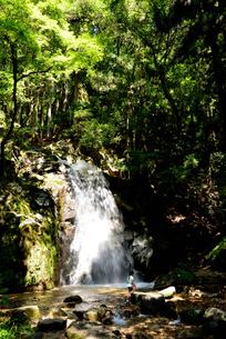 寿老の滝の写真素材 [FYI02988480]
