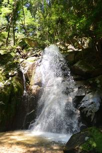 寿老の滝の写真素材 [FYI02988488]